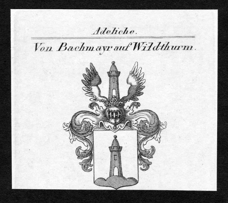 Von Bachmayr auf Wildthurm - Bachmayr auf Wildthurm Wappen Adel coat of arms Kupferstich antique print heraldr