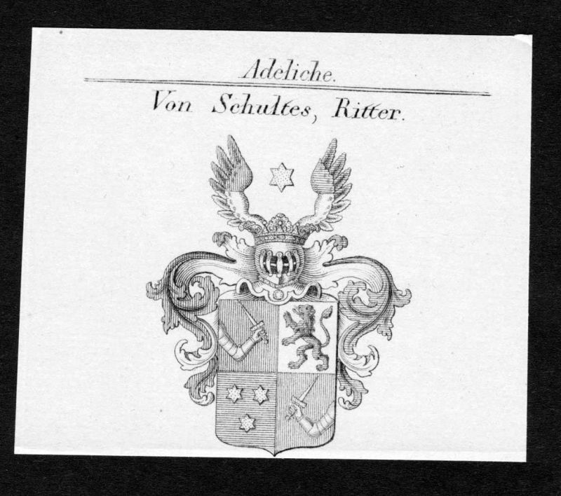 Von Schultes, Ritter - Schultes Wappen Adel coat of arms Kupferstich antique print heraldry Heraldik