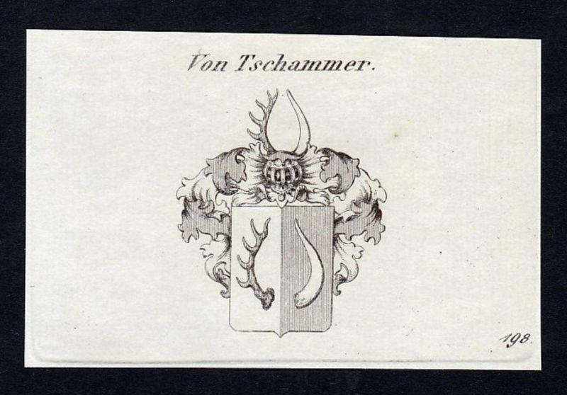 Von Tschammer - Tschammer Schlesien Wappen Adel coat of arms heraldry Heraldik Kupferstich engraving