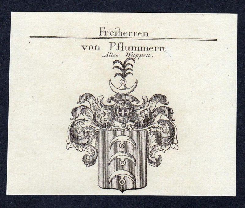Von Pflummern - Karl Pflummern Wappen Adel coat of arms heraldry Heraldik Kupferstich engraving