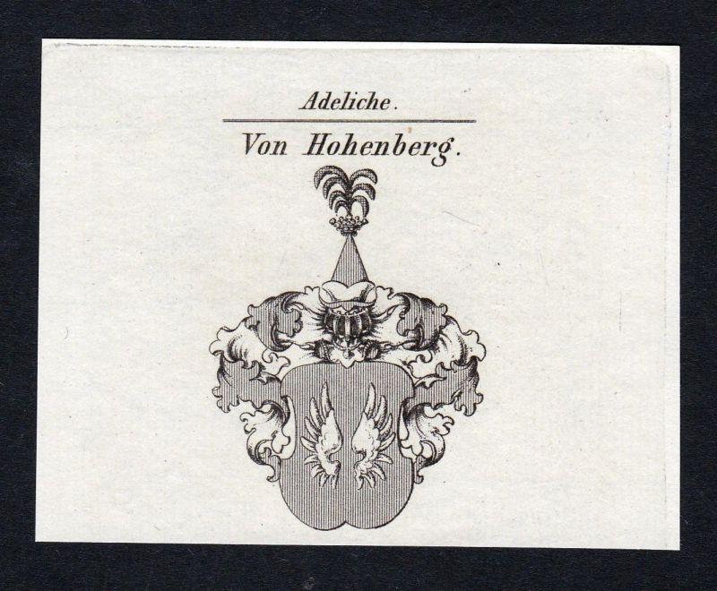 Von Hohenberg - Hohenberg Wappen Adel coat of arms Kupferstich antique print heraldry Heraldik