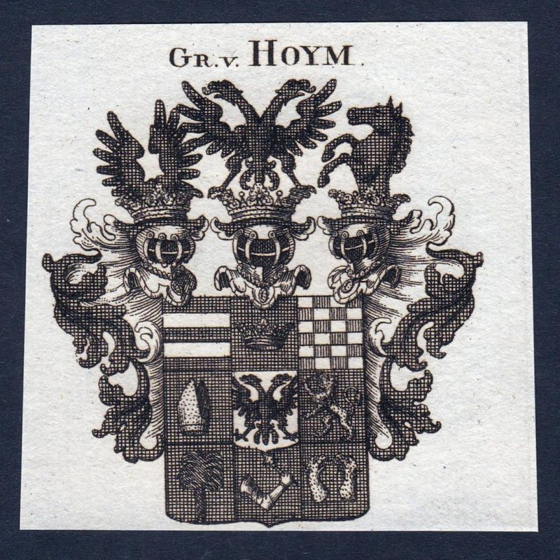Gr. v. Hoym - Hoym Anhalt Sachsen Wappen Adel coat of arms heraldry Heraldik Kupferstich engraving