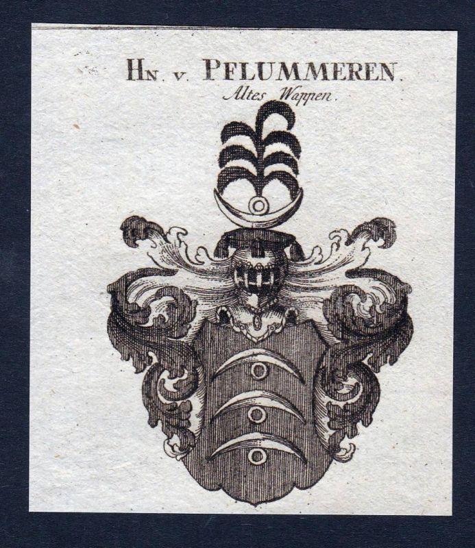 Hn. v. Pflummeren - Pflummeren Pflummern Wappen Adel coat of arms Kupferstich antique print heraldry Heraldik