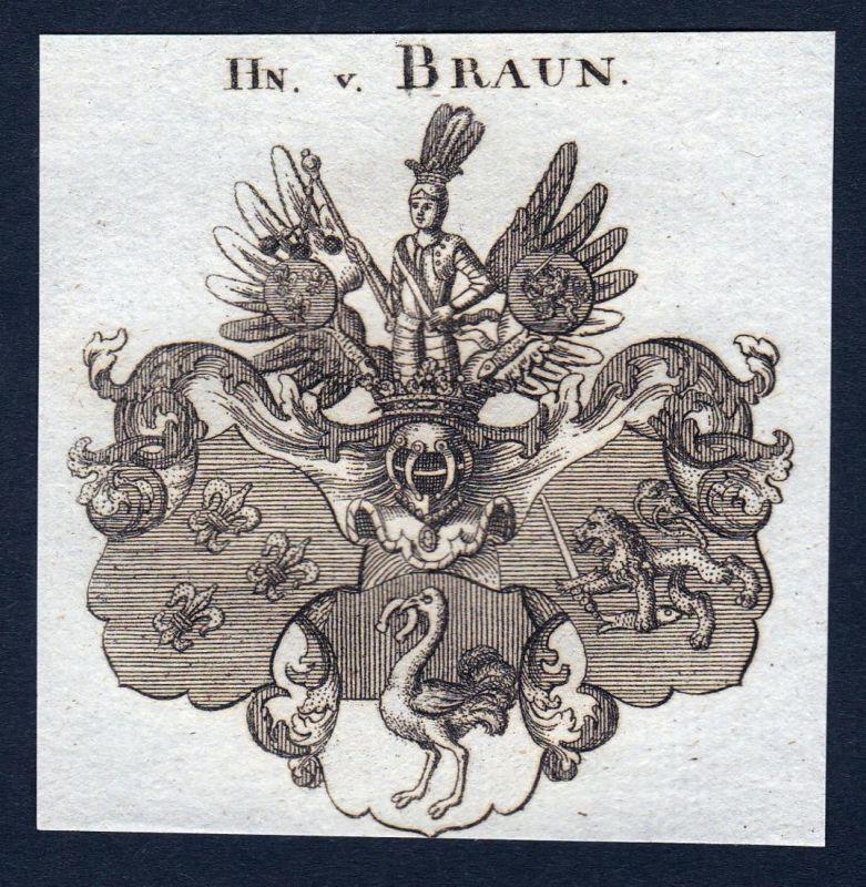 Hn. v. Braun - Braun Wappen Adel coat of arms Kupferstich antique print heraldry Heraldik