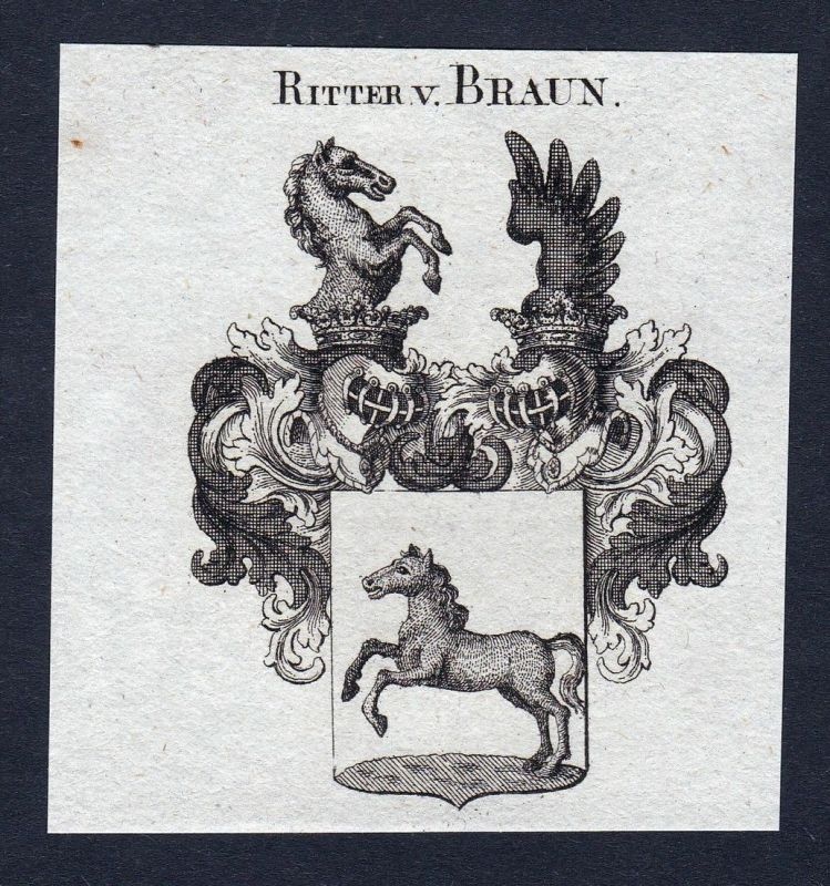 Ritter v. Braun - Braun Wappen Adel coat of arms Kupferstich antique print heraldry Heraldik