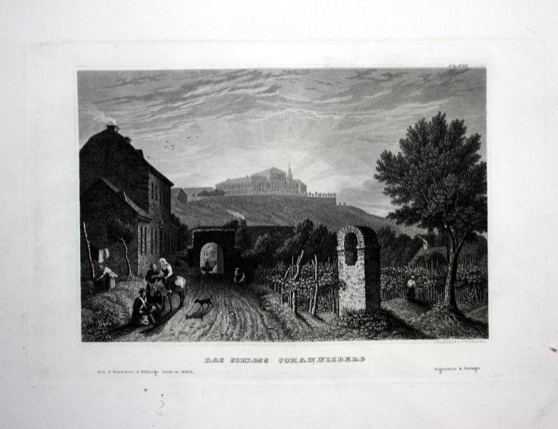 Das Schloss Johannisberg - Schloss Johannisberg Rheingau Geisenheim-Johannisberg Ansicht Stahlstich antique pr