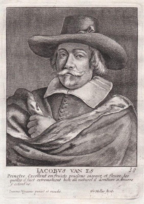 Iacobus van Es - Jacob van Es Maler painter Portrait Kupferstich copper engraving antique print