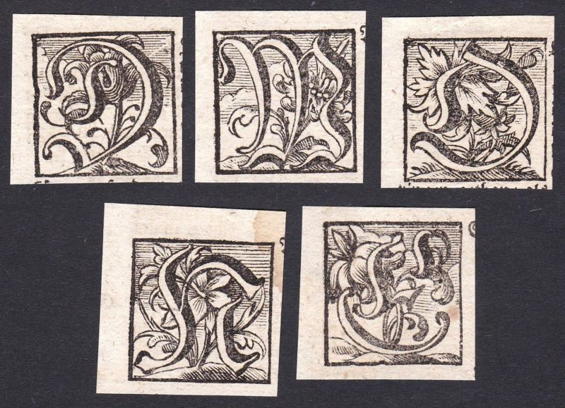 Konvolut von 5 Ornament Kupferstich-Buchstaben ornament letters antique print gravure copper engraving