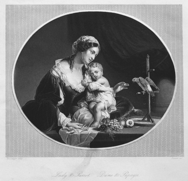 Lady & Parrot / Dame & Papagei - Frau Kind woman child parrot Papagei Vogel bird Stahlstich steel engraving an