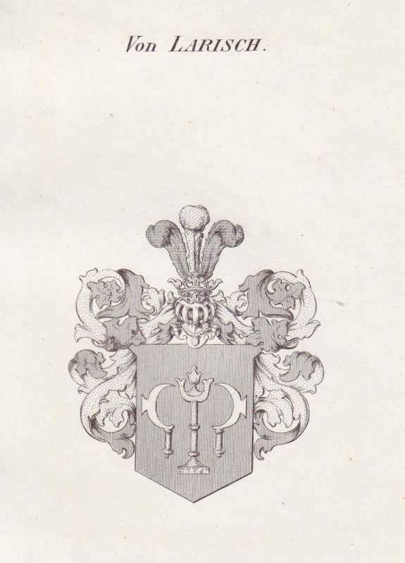 Von Larisch - Larisch Schlesien Wappen Adel coat of arms heraldry Heraldik Kupferstich antique print