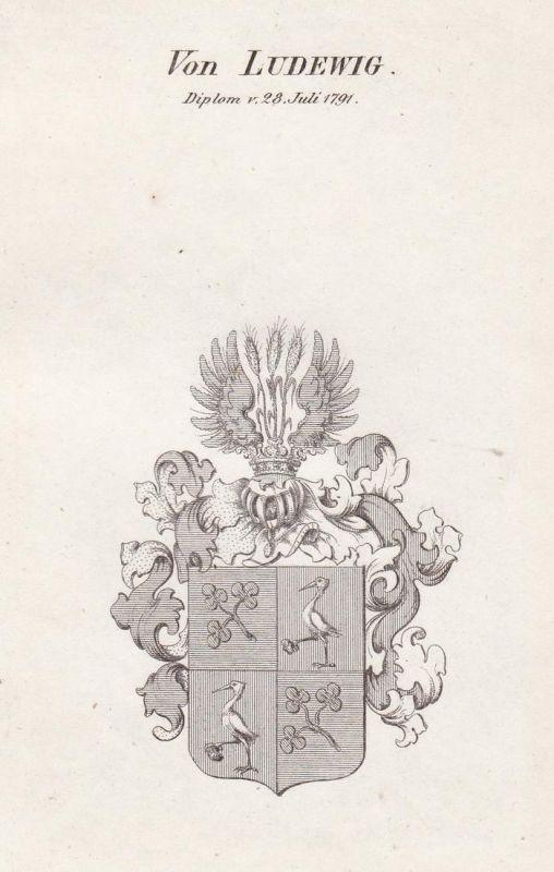 Von Ludewig. Diplom v. 28 Juli 1791 - Ludewig Wappen Adel coat of arms heraldry Heraldik Kupferstich antique p 0