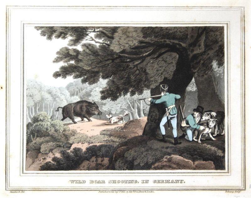 Wild boar shooting, in Germany - Wildschwein wild boar Jäger hunter Jagd hunt jagen hunting Radierung 0