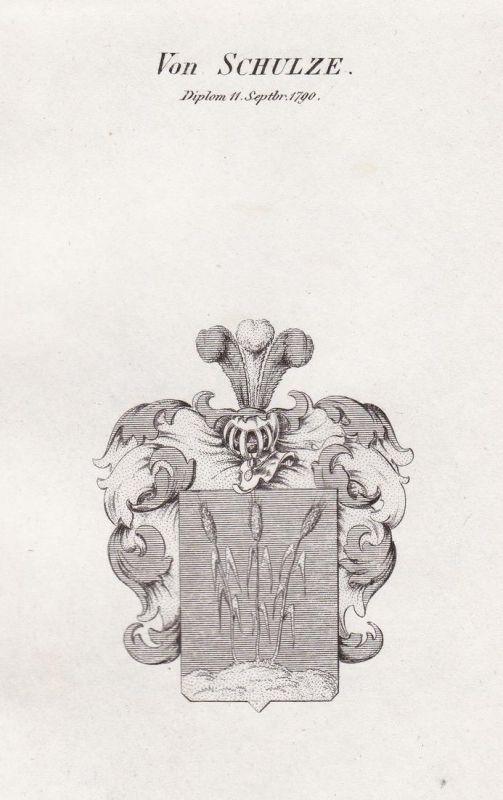 Von Schulze. Diplom 11. Septbr. 1790 - Schulze Schultze Wappen Adel coat of arms heraldry Heraldik Kupferstich