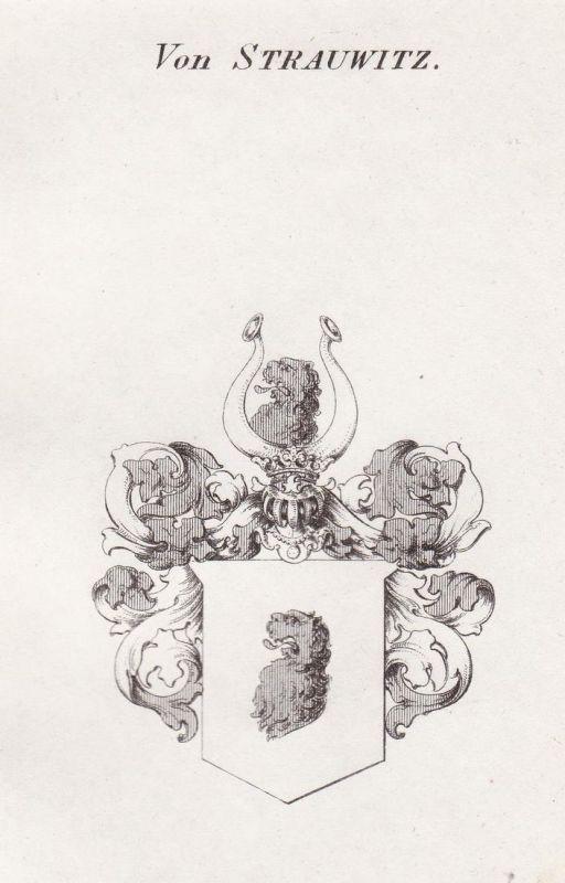 Von Strauwitz - Strachwitz Schlesien Wappen Adel coat of arms heraldry Heraldik Kupferstich antique print