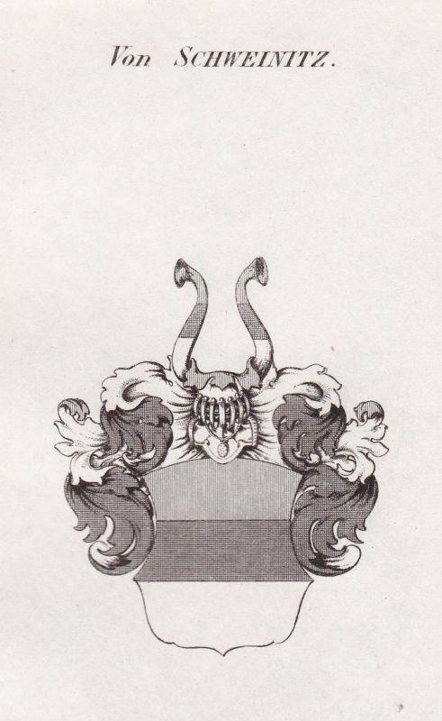Von Schweinitz - Schweinitz Schlesien Wappen Adel coat of arms heraldry Heraldik Kupferstich antique print