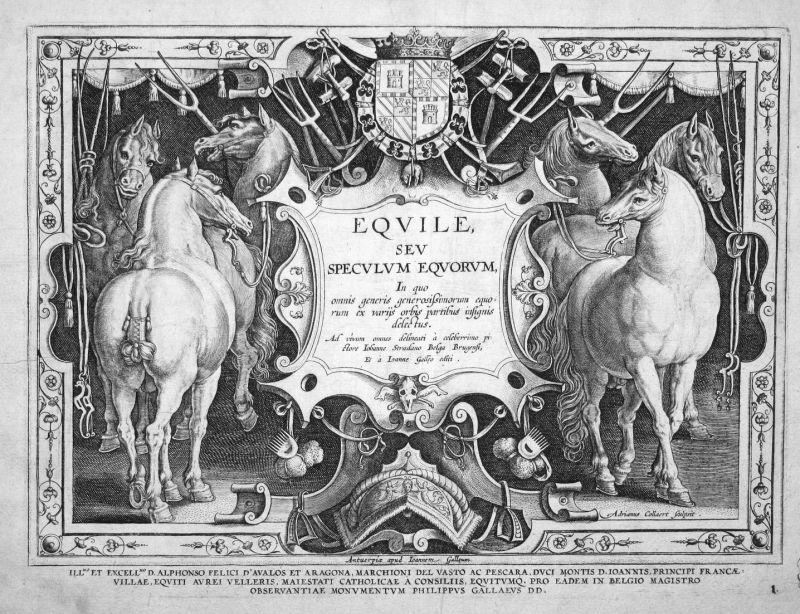 Equile, sev Speculum Equorum - horse Pferd horses Pferde title Kupferstich copper engraving Stradanus