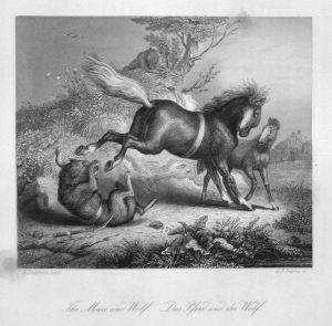 The Mare and Wolf. / Das Pfers und der Wolf. - Reineke Fuchs Reynard the Fox Pferd horse Wolf wolf Stahlstich