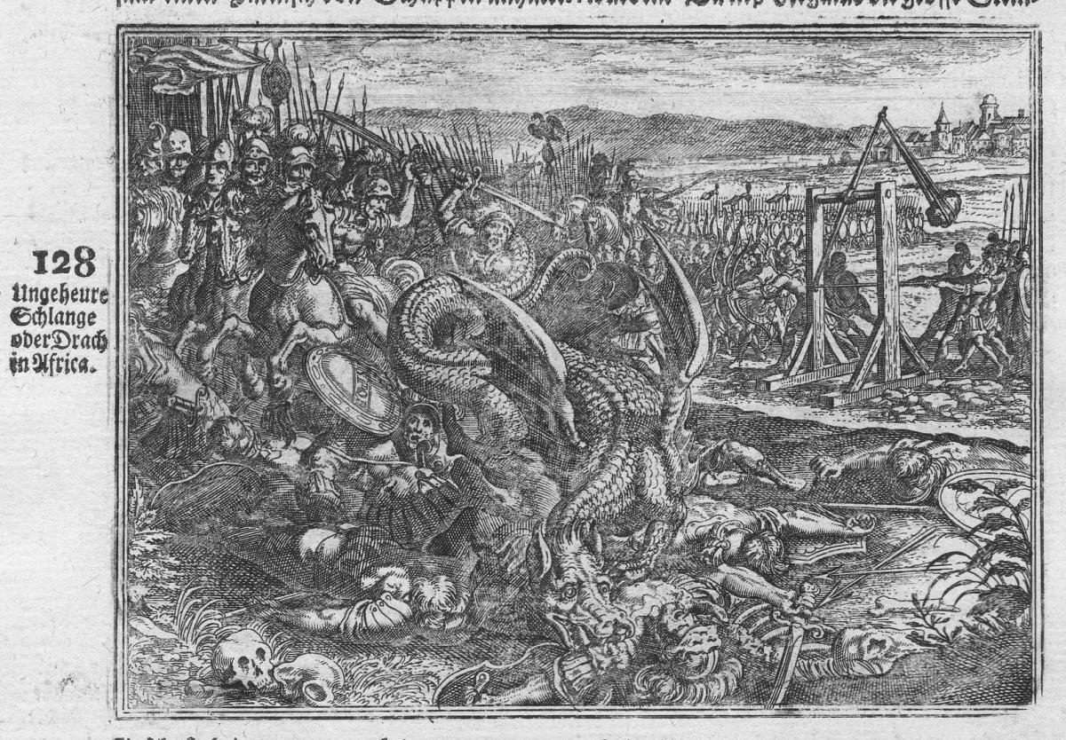 Ungeheure Schlache oder Drach in Africa - Drache dragon Afrika Africa Schlange Schlacht battle Antike antiquit