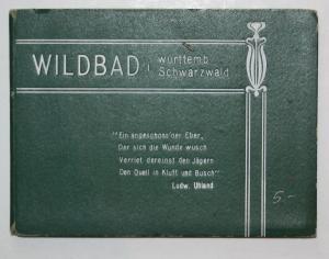 Wildbad i. württemb. Schwarzwald.