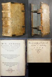 M. Antonii Flaminii in librum psalmorum brevis explanatio ad Alexandrum Farnesium Cardinaelem amplißimum.
