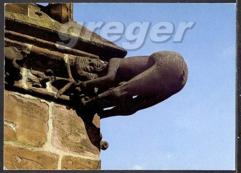 AK Freiburg im Breisgau Wasserspeier am Münster   16/24