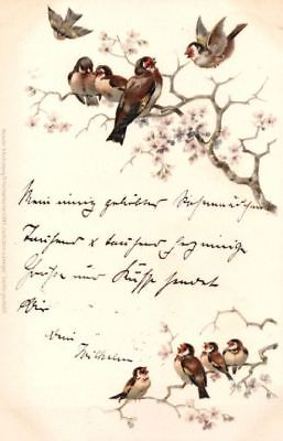 Künstler Postkarte Zwitschern in Zweigen, Serie 1043, ca. 1900