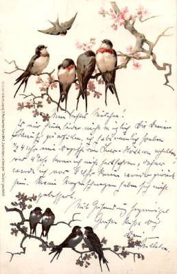 Künstler Postkarte, Zwitschern in Zweigen, Serie 1043, 1901