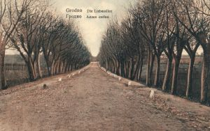 Foto AK, Grodno, Liebesallee, 1917