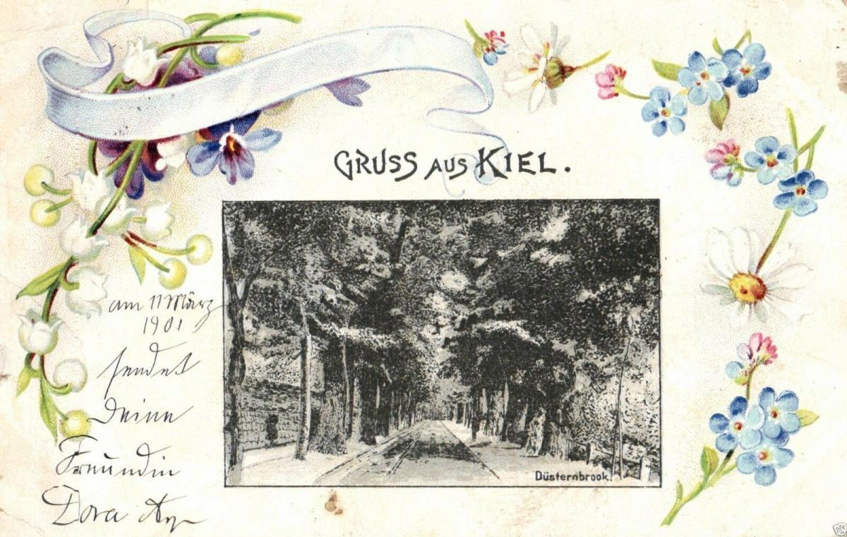 Foto AK, Jugendstil, Gruss aus Kiel, Düsternbrook., 1901 0