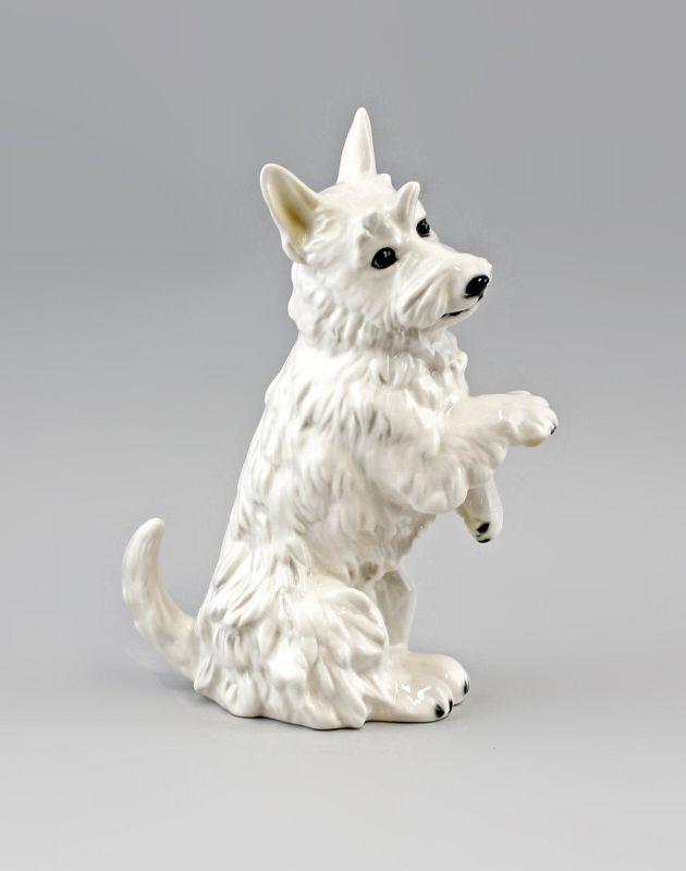 9941616 Ens Porzellan Figur Terrier sitzend hell Hund 14x9x24cm