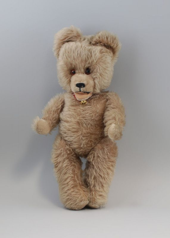 Teddy 44 cm kaum bespielt 99810063