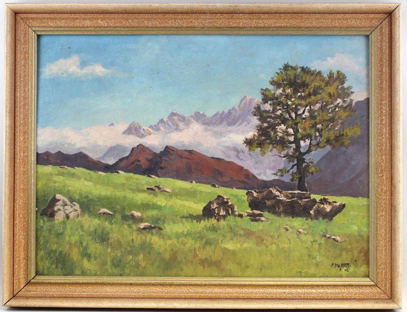 8160018 Öl-Gemälde signiert P. Kästner 1945 Alpen Landschaft Wiese