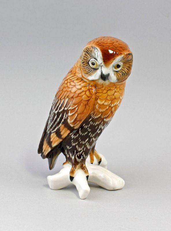 Porzellan Figur Waldkauz Kauz  Eule Vogel Ens 17x10cm 9941685#