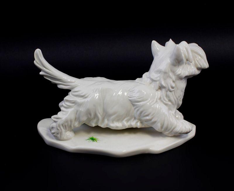 Ens Porzellan Figur Terrier hell hebt Pfote Hund 23x11x15cm 9941584# 2