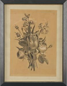 8463010 Botanische Zeichnung Bleistift Pastellkreide signiert Doumere 1877