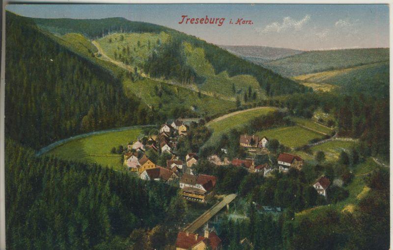 Treseburg im Harz v. 1913 Dorfansicht (AK694)