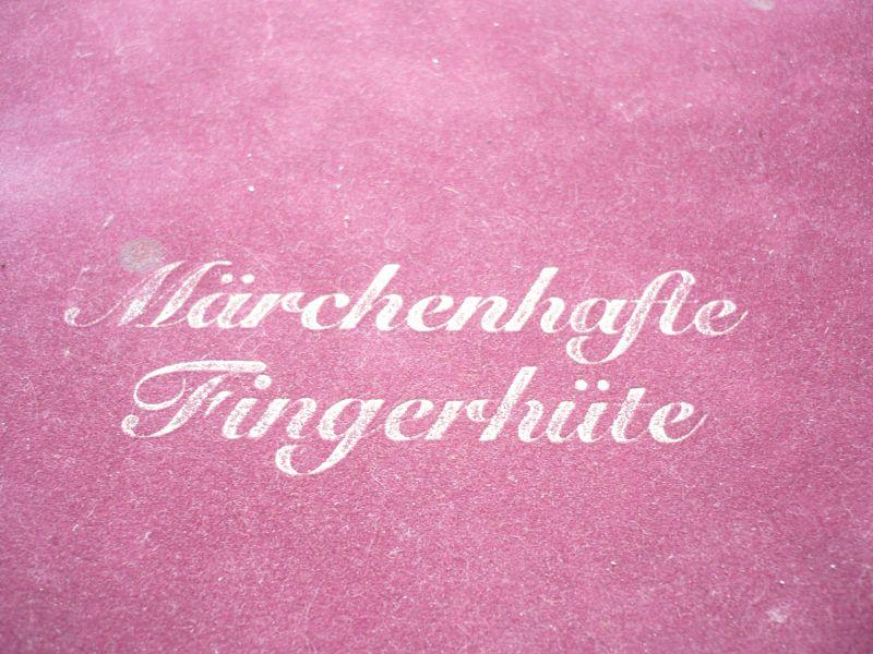 Meissen Saxonia Porcellan Fingerhüte - Märchenhafte Fingerhüte in Schmuck Etui