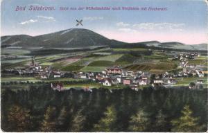 Bad Salzbrunn - Blick von der Wilhelmshöhe nach Weißstein mit Hochwald von 1919 (009AK)