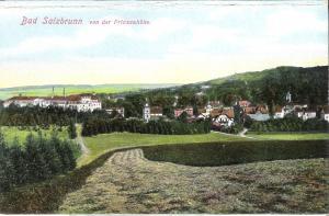Bad Salzbrunn - Stadtansicht von der Prinzenhöhe von 1912 (030AK)
