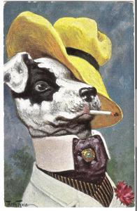 T.S.N. Serie Hund mit Hut und Zigarette von 1914 (L059AK)