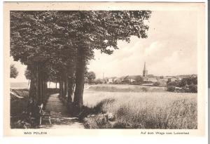 Bad Polzin - Auf dem Wege vom Luisenbad von 1915 (079AK)