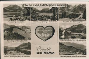 Spitzingersee v. 1960 7 Ansichten und ein Original Edelweiß (AK2277)