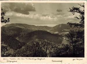 AK Görbersdorf Sokolowsko Blitzengrund 1940 gelaufen mit Marke
