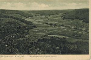 AK Heiligenstadt, Heilbad, Eichsfeld, Maienwand, 1944 gelaufen mit Marke