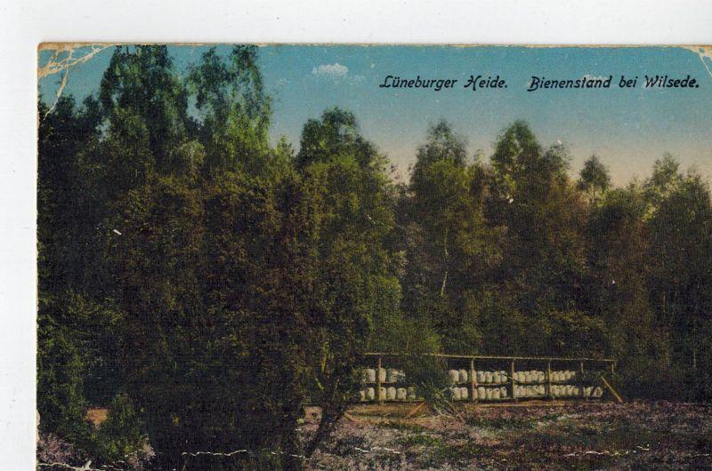 AK Lüneburger Heide, Bispingen, Wilsede, Bienenstand, color, 1918 gelaufen ohne Marke, Feldpost