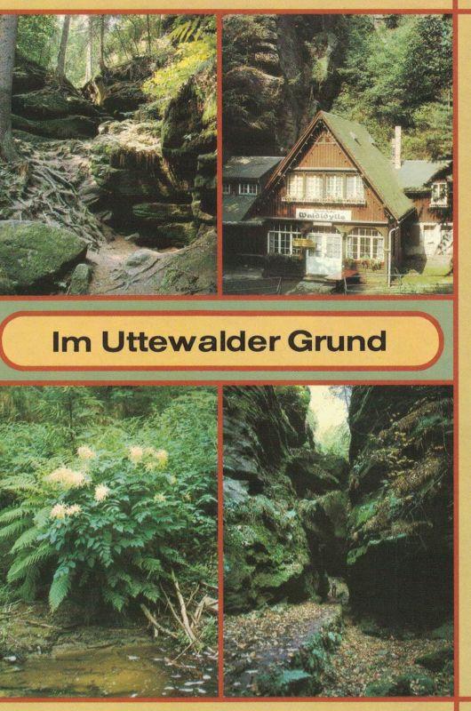 AK Lohmen, Uttewald, Uttewalder Grund, Waldidylle, Sächsische Schweiz, 1987 ungelaufen, beschriftet