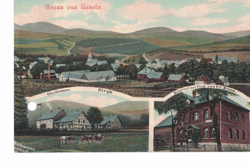AK Willingen, Upland, Usseln, Oberförsterei, Gasthof zur Post, 1913 gelaufen mit Marke