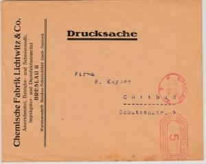 DR - 5 Pfg. Gebühren-FS, Drucksache Breslau - Cottbus 1928, ohne Inhalt