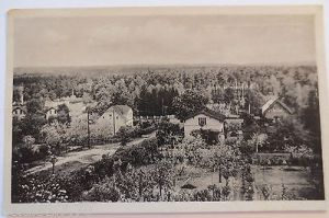 Waldsieversdorf, Blick zu den Bollersdorfer Höhen, 1955 (32803) 0