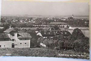 Pferd, Reiter, Künstlerkarte 1908 (14578)